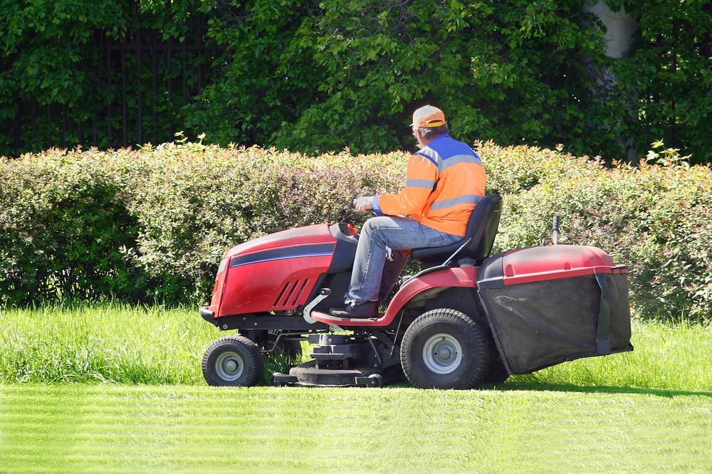 cutting-grass